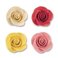 Rosa medie, colori