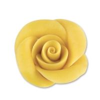 Rosa medie, gialle