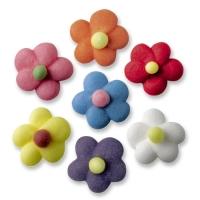Fiori piccolo, colorati
