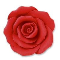 24 pz Rose rosse, grandi