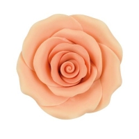 24 pz Rose color salmone grandi