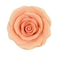 Rosa grande, colore salmone-aranc