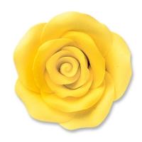 24 pz Rose gialle grandi