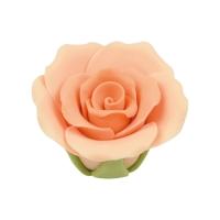 Rosa medie, colore salmone-aranc