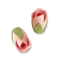 Boccioli di rosa, colore rosa