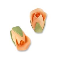Boccioli di rosa, colore salmone-aranc