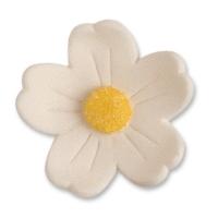 60 pz Fiori bianchi grandi