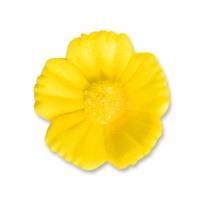 96 pz Fiori gialli medi