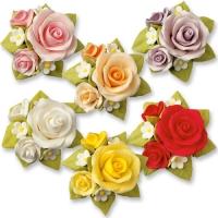 Bouquet di Rosa, colori