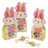 12 pz Scatola regalo, Coniglietto Pasqua