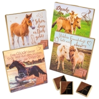16 pz scatole con cavalli
