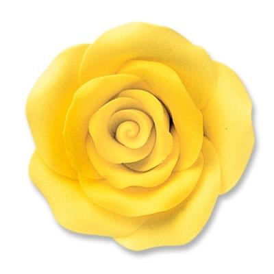 Rosa grande, gialle